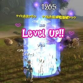 Level Up(*'ω'*)