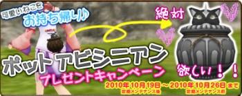 にゃんこ=3000円