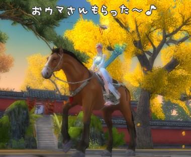 馬もらった?♪