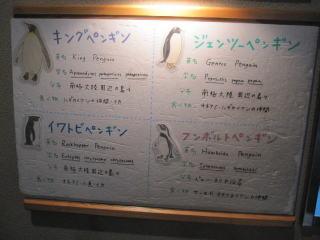 2-14-4.jpg
