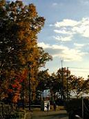 湖と紅葉。