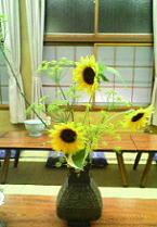 向日葵vv