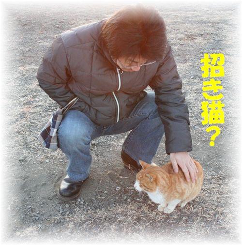 2009年 元旦 招き猫さん?