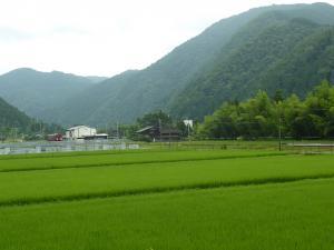 長良川鉄道2