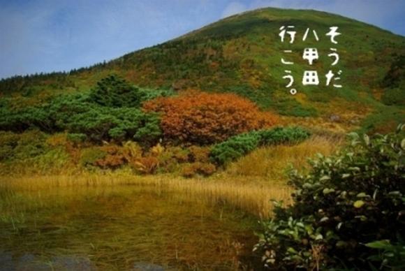 081005-98.jpg