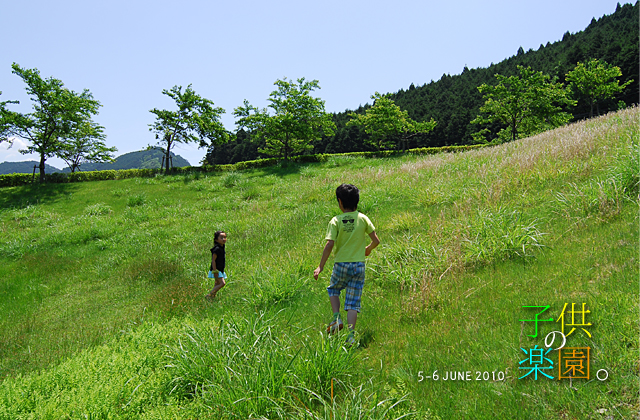 DSC_4604.jpg