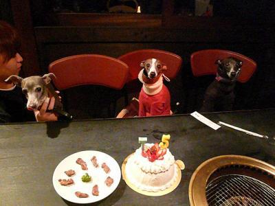 cake_20100210001519.jpg