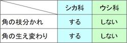 ツノの表3