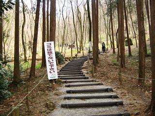 katakuri120325-216