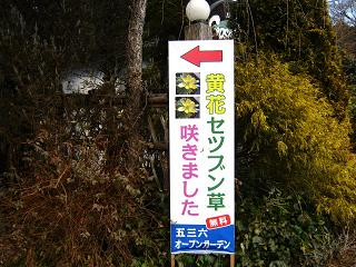 kibanasetubunsou120219-203