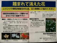 takao120408-102