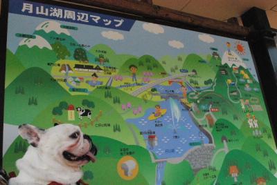 2008_0811モー子0060