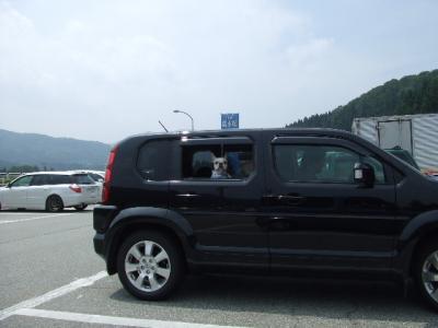 2008_0809モー子0005