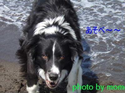 2007_07010026.jpg