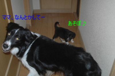 DSC_7528.jpg
