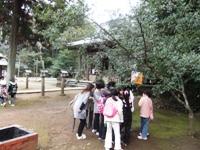 平成22年度レトロ冒険隊五社神社 (57)