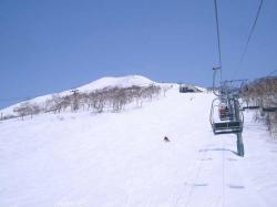 2008 4 6 niseko5