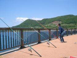 2008 6 15 toyoura3