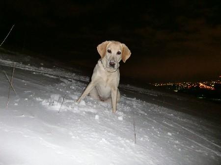 雪だまくれ~っ!