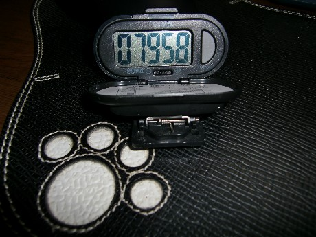 7958歩