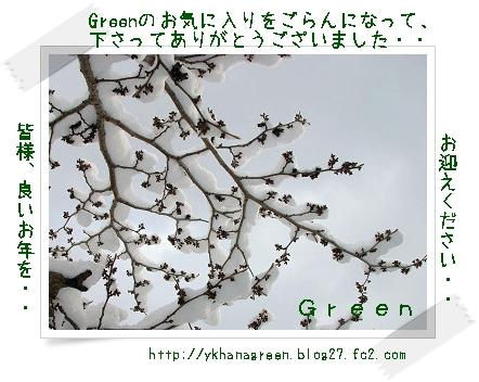 350yuki81226bsoomisoka.jpg