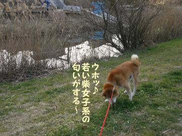 ・代・・倥・・托シ神convert_20090111203349