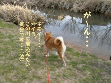 ・代・・倥・・托シ狙convert_20090111203458