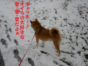 ・代・・托シ胆convert_20090112194838