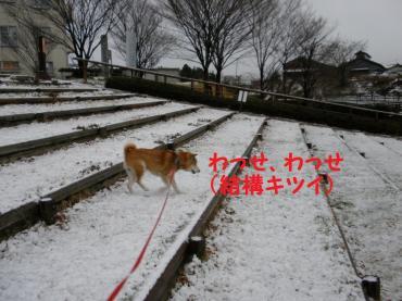 ・代・・托シ偵・・点convert_20090112195015