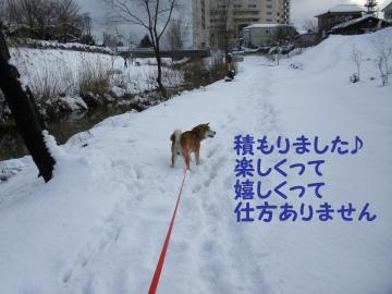 ・代・・托シ薙・・狙convert_20090113175637