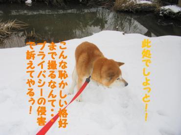 ・托シ托シ輔・・点convert_20090116201258