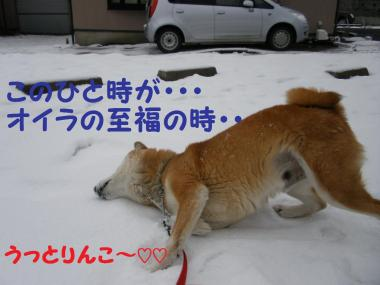 ・托シ托シ包シ農convert_20090117191711