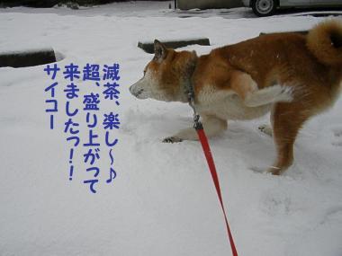 ・托シ托シ包シ胆convert_20090117191605