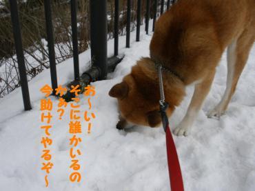 謨大勧_convert_20090119130950