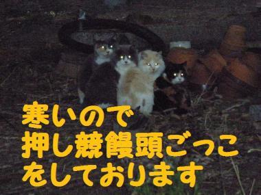 ・托シ抵シ薙・・廟convert_20090123203205