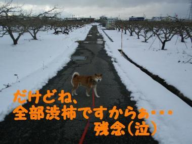 ・托シ抵シ輔・・狙convert_20090126003700