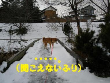 ・托シ抵シ輔・・胆convert_20090126003728