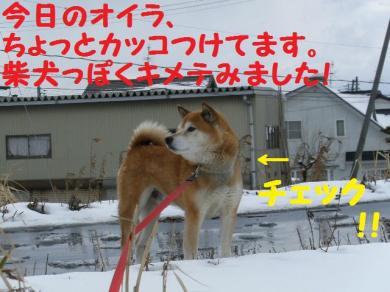 ・托シ抵シ難シ農convert_20090129010952