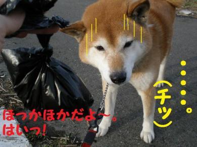 ・托シ抵シ吶・・胆convert_20090131013947