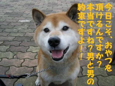 ・托シ難シ狙convert_20090131201747
