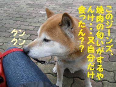 ・托シ難シ代・・農convert_20090131201912