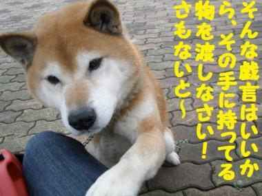 ・托シ難シ代・・棒convert_20090131205920