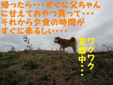 ・托シ難シ代・・托シ神convert_20090201235841