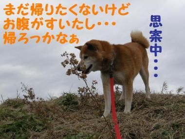 ・托シ難シ代・・兩convert_20090201235929
