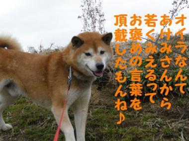・托シ難シ托シ趣シ托シ狙convert_20090202004041