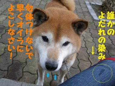 ・抵シ偵・・狙convert_20090202183955