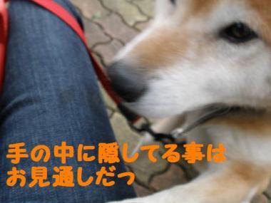 ・抵シ偵・・胆convert_20090202184027