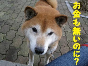・抵シ偵・・托シ胆convert_20090203133845
