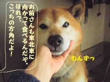 ・撰シ抵シ撰シ薙・・狙convert_20090203172759