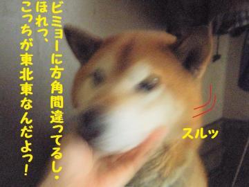 ・撰シ抵シ撰シ薙・・胆convert_20090203172822